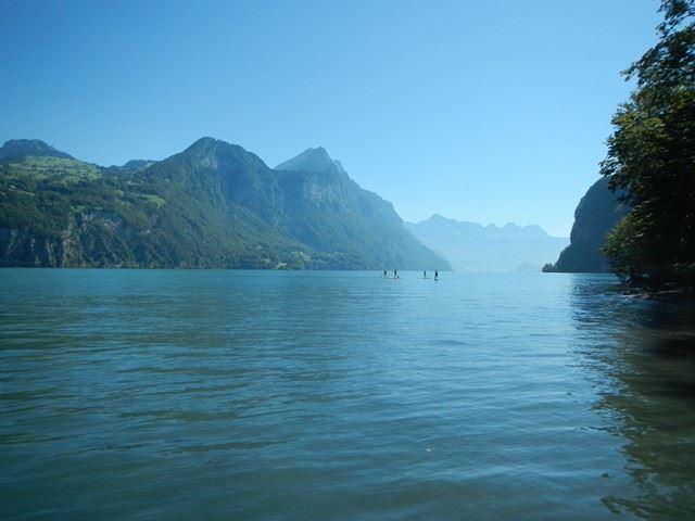 Wildnis der Schweiz
