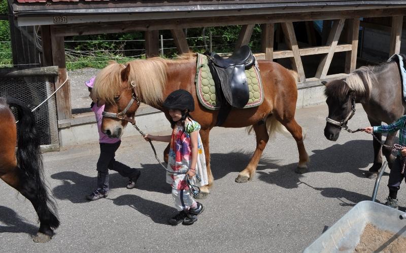 Meine Tochter feierte ihren 6. Geburtstag in Krummenau auf dem Ponyhof (Angaben am Schluss des Artikels).